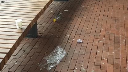 Gooi je afval maar op straat, want de gemeente Amstelveen ruimt het op gemeenschapskosten heel libeerraal op gemeenschapskosten op.